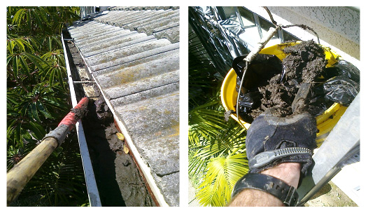 rain-gutter-cleaning-and-debris-removal