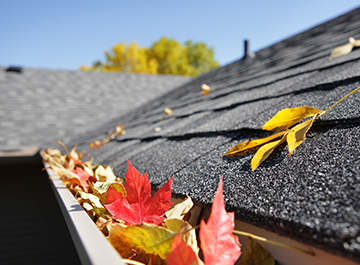 Clean your rain gutters and remove debris that is keeping your rain gutters from draining properly. Clogged gutters can even cause damage to your home by overflowing and possibly breaking away from the fascia boards on your home.